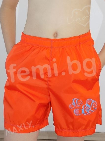 Boy's Shorts Swimwear  Maxly