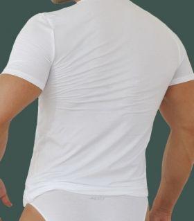 Men t-shirt Maxly 6981 online
